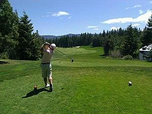 300px-Golfer_swing